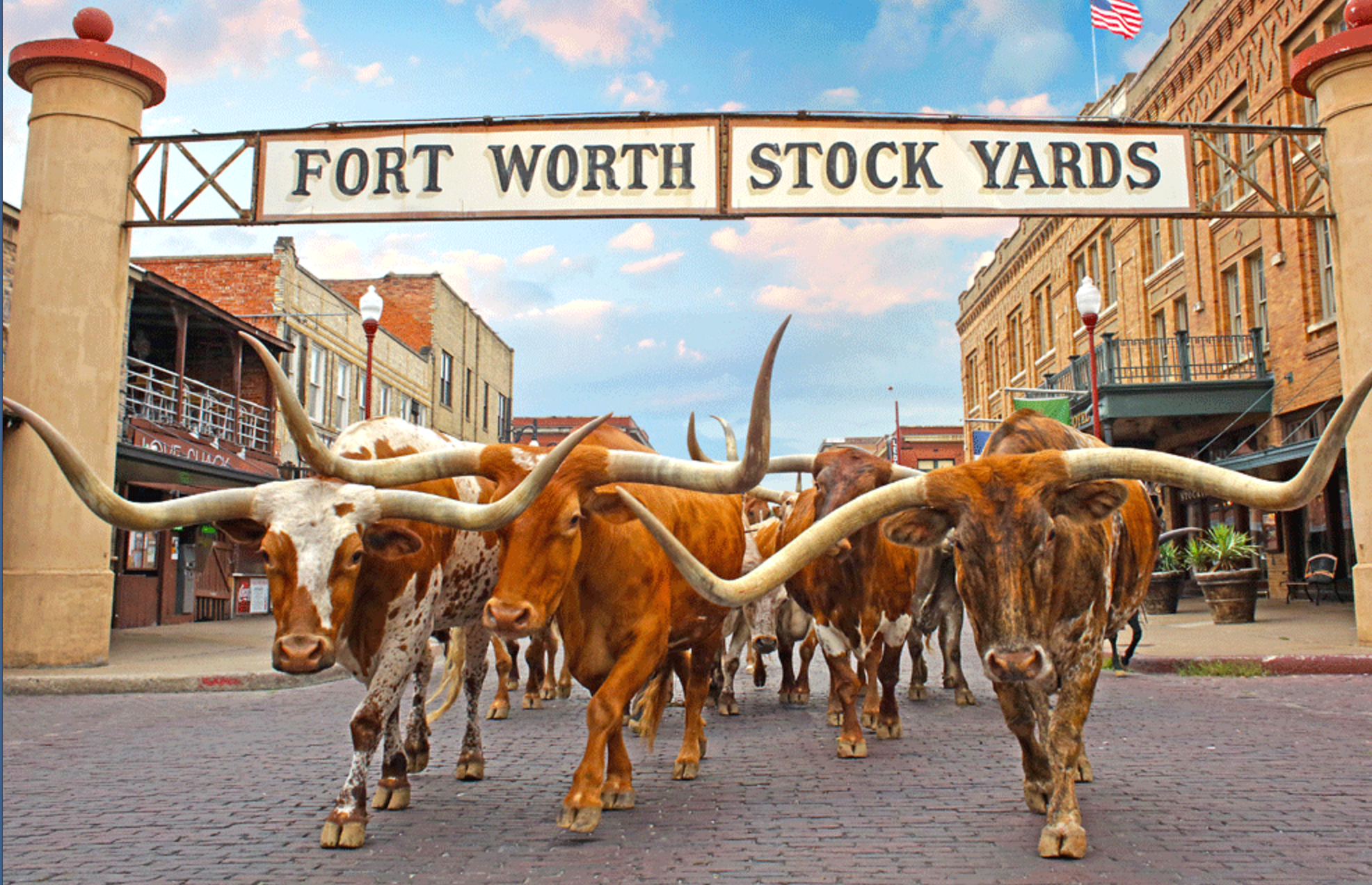 @AISAPinfo Annual Institute: My 14 Favorite Fun Facts about Fort Worth